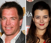 Vote! Should 'NCIS' Stars Tony and Ziva Hook-Up?
