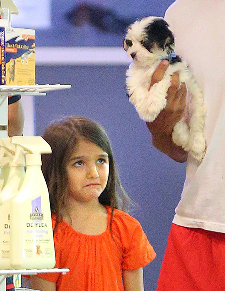 Suri Cruise Video Chats with Tom, Throws Fit over Puppy