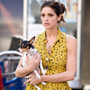 Ashley Greene's Dog Dies in Condo Fire