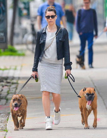 Jessica Biel took a stroll with her two dogs in NYC on Wednesday.